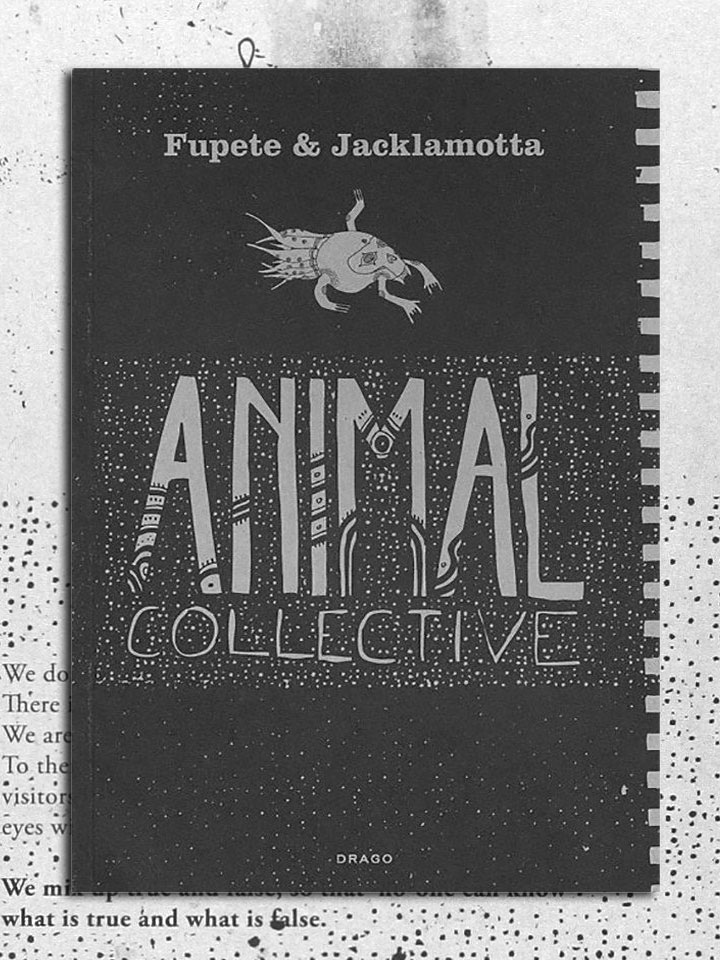 animal-collective-fronte