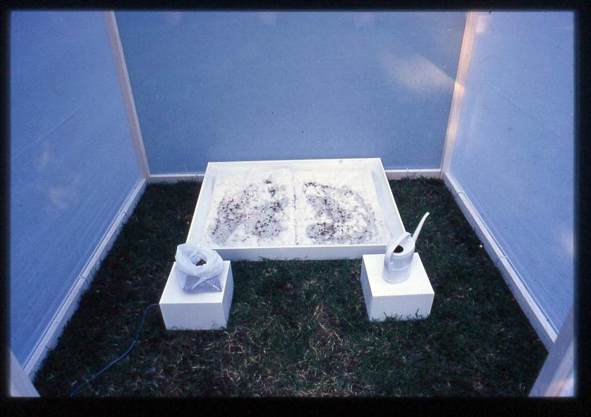 cart-gonnelli2-2004-nasonero