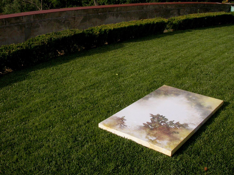 cart-ruberti-2004-nasonero